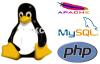 ubuntu 14.04 的 LAMP 环境配置